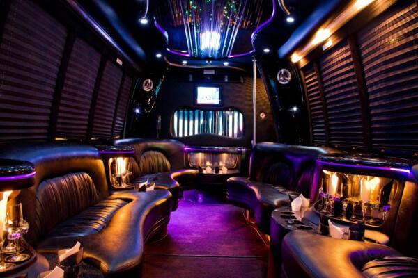15 Person Party Bus Rental Plano